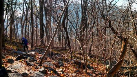 The Appalachian Trail... beautiful, but kind of rocky!